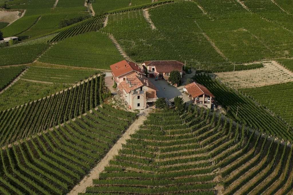 Vinařství Franco Conterno
